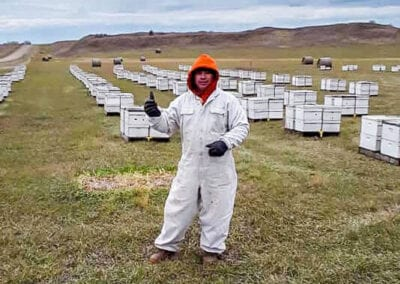 Moving bees in the cold!