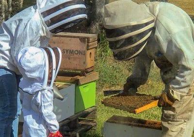 Three Generations of Beekeepers image