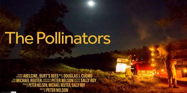 Pollinator Documentary Film Poster